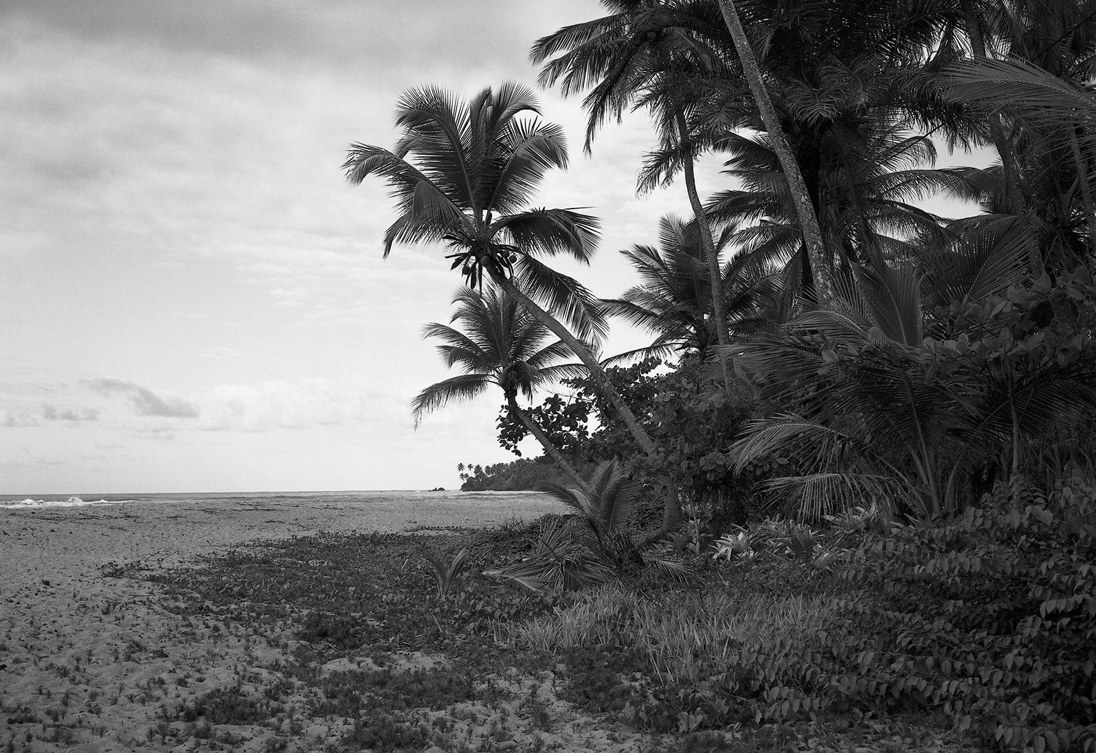 Stéphanie Gygax – Useful Landscape